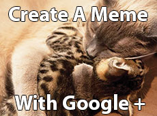 How to create a meme with Google Plus